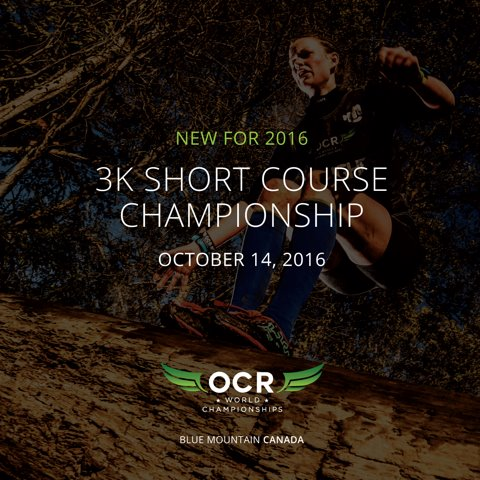 ocr nationals lost coursework