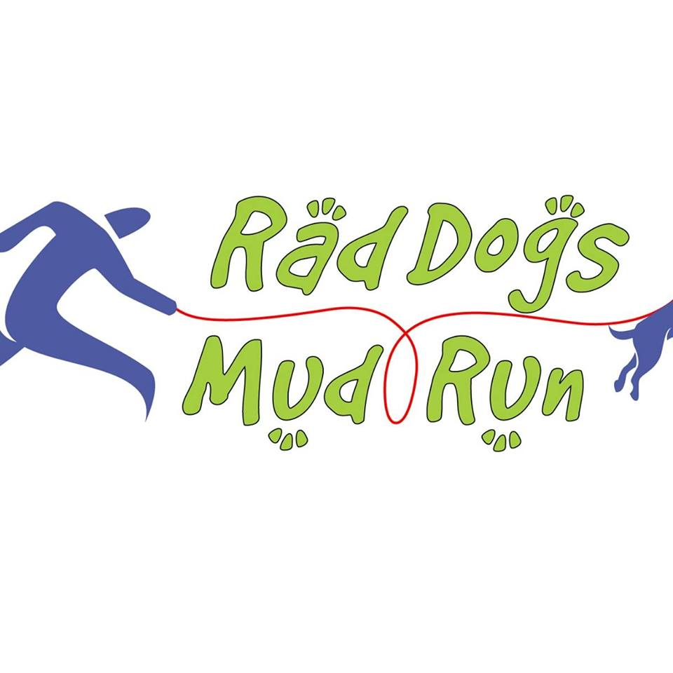 San Diego California Rad Dogs Mud Run 2020 | Mud Run, OCR, Obstacle